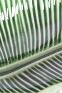 Bordallo Pinheiro Banana Leaf Salad Bowl