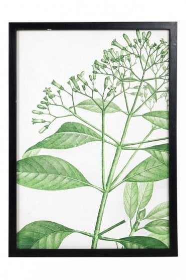 Nature Wall Art Small Leaves Print