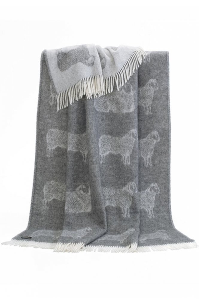 JJ Textiles Dot Sheep Throw in Grey