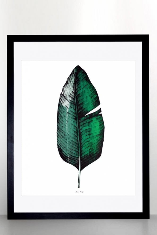 Sue Parkinson Home Collection Banana Leaf Screen Print