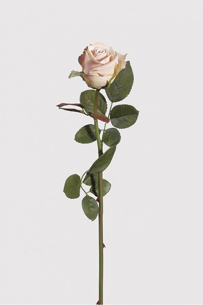 Sue Parkinson Home Collection Cream Blush Rose Antique