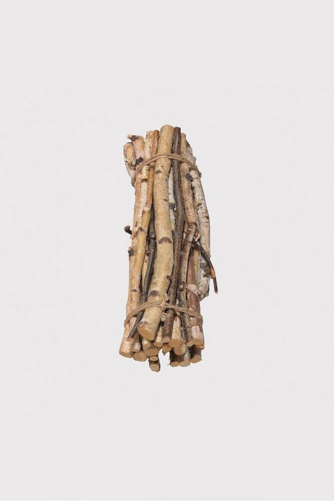 The Home Collection Natural Wood Birch Branch Bundle