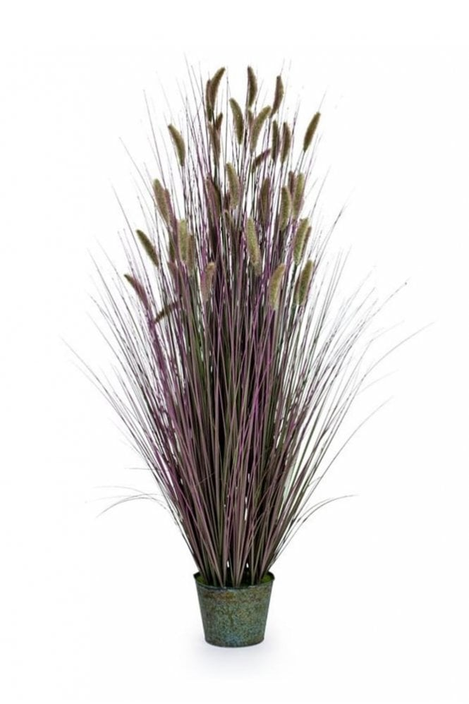 Sue Parkinson Home Collection Ornamental Grasses in Galvanised Pot – Style 6