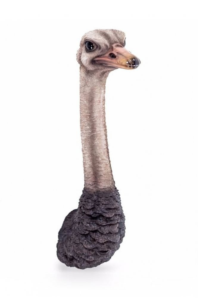 Sue Parkinson Home Collection Ostrich Head Wall Figure