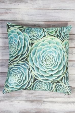 Succulent Cushion in Aqua