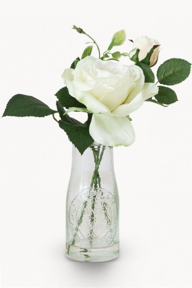 The Home Collection Sunbury Rose in Milk Bottle