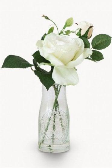 Sunbury Rose in Milk Bottle