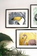 The Home Collection Toucan Screen Print